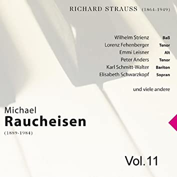 Michael Raucheisen Vol. 11