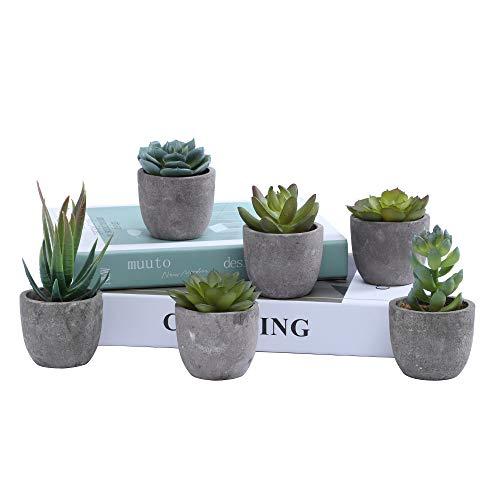 Juego de 6 plantas suculentas artificiales con maceta y plantas suculentas para decoración de computadora, realista, falso plantas para decoración de interiores