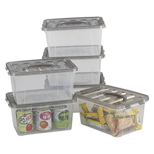 Neadas Cajas de Almacenamiento de Plástico Transparente con Tapa y Mango de Color Gris Transparente, 6 Unidades