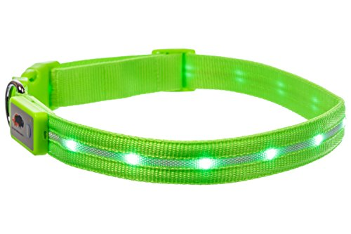 Blazin' Safety LED Dog Collar – USB Rechargeable with Water Resistant Flashing Light – Medium Green