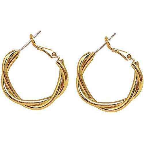 Hoop Twist Earrings, Hypoallergenic Creoles for Women, 925 Sterling Silver Earrings Jewelry Accessories Gift for Women Girl