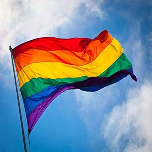 150 * 90 cm 5 * 3ft Homosexuell Lesben Bunte Regenbogenfahnen Friedensfahnen Parade Fahnen Verblassen Widerstand LGBT Stolz Flagge Hauptdekorationen Kaemma(Color:Rainbow Color)