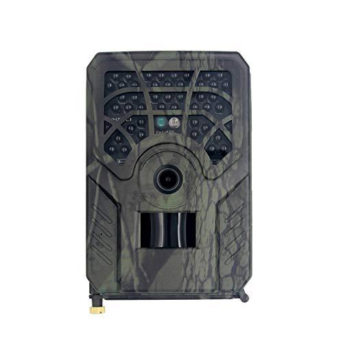 Exuberanter Wildkamera Mit Bewegungsmelder Nachtsicht, Wildtierkamera HD 5MP 720P Weitwinkel IP54 wasserdichte Trail-Kamera Mit 32 GB TF-Karte