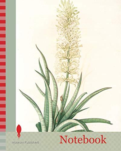 Notebook: Sansevieria zeylanica,...