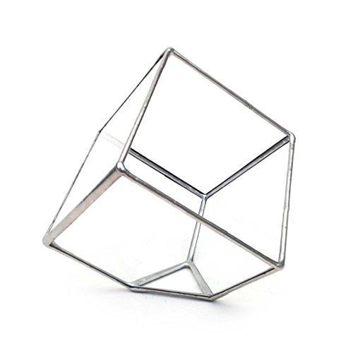 Petit Terrarium Cube + 1 Plante à air et Sable Blanc + Guide/kit de Bricolage/Fait Main en Angleterre, Verre, Silver, Small