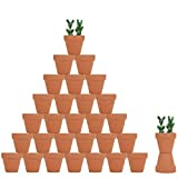 32pcs Small Mini Clay Pots, 2' Terracotta Pot Clay Ceramic Pottery Planter, Cactus Flower Nursery Terra Cotta Pots, with Drainage Hole, for Indoor/Outdoor Succulent Plants, Crafts, Wedding Favor