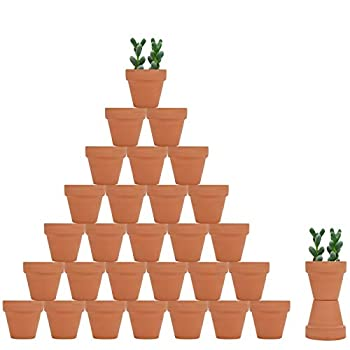 32pcs Small Mini Clay Pots 2  Terracotta Pot Clay Ceramic Pottery Planter Cactus Flower Nursery Terra Cotta Pots with Drainage Hole for Indoor/Outdoor Succulent Plants Crafts Wedding Favor