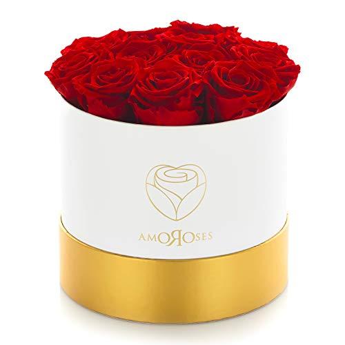 Amoroses 12 Rose Stabilizzate Vere durano Anni - Idea Regalo per Lei Originale Elegante Bouquet per Anniversario e Altre Occasioni Speciali (Scatola Bianca con Rose Rosse)