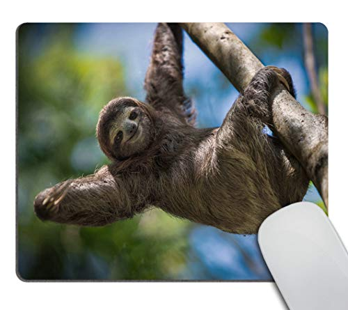 Smooffly Happy Sloth Customized Rectangle Non-Slip Rubber Mousepad Gaming Mouse Pad 9.5 X 7.9 Inch (240mmX200mmX3mm)