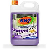 Kh profesional desic insecticida limpiasuelos 5l