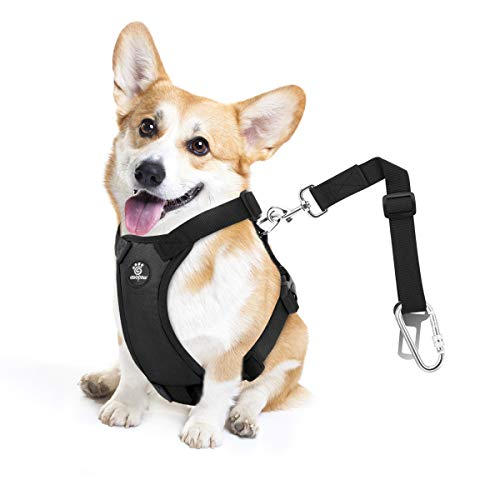 VavoPaw Dog Vehicle Safety Vest Harness, Adjustable Soft Padded Mesh Car Seat Belt Leash Harness with Travel Strap and Carabiner for Most Cars, Size Medium, Black