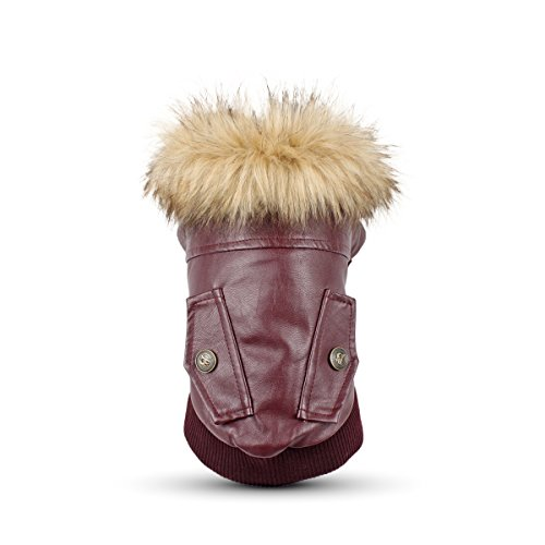 LESYPET Leather Dog Coat Waterproof Dog Winter Coat Puppy Jacket for Small to Medium Dogs, Red Large