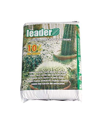 Leader Terriccio Cactacee, Piante grasse e succulente 10Ltr, Verde