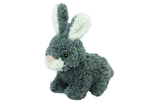 Multipet Look Who's Talking Plush Talking Rabbit Dog Toy, 6-Inch