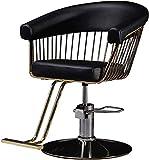 WYB Salón Belleza Silla peluquería Silla de barbero hidráulico 360 ° Rotación/Alta Resistencia Esponja/Diseño de pie/Impermeable y fácil de Limpiar
