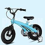 TXTC Enfants Vélo Freestyle Formation Roues De Bicyclette Et Panier, Vélo for 2-6 Ans Ans, Cadre en Acier Au Carbone À Haute,...