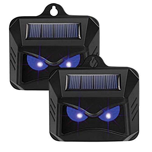 DECTRONIC Ahuyentador de martas solar con 2 luces LED azules, ahuyenta a los molestos animales del jardín, juego de 2 unidades