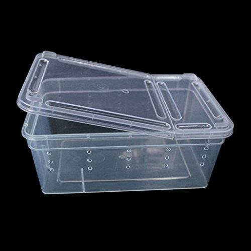 Rtengtunn Transparente Kunststoffbox Insekten-Reptilien-Transportbox zur Aufzucht von Lebendfutter