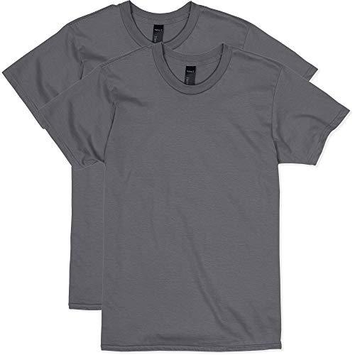 Hanes Men's Nano Premium Cotton T-Shirt (Pack of 2), Smoke Grey, Medium