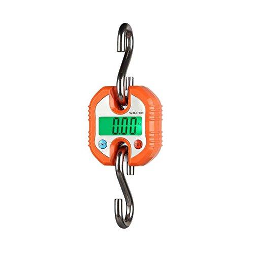 Befaith WH-C100 150kg x 50g Bilancia a sospensione digitale Gancio in acciaio inossidabile Bilancia elettronica per bagagli Bilancia per pesare