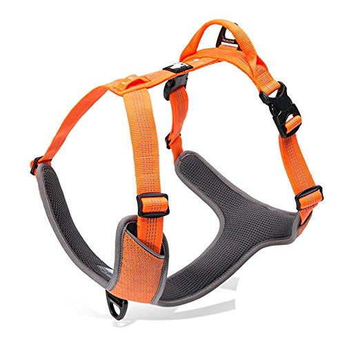 RC GearPro No Pull hondenharnas Outdoor Adventure reflecterend vest met handvat en 2 linnen bevestigingen passende linnen halsband voor de Pet Walking Training, Medium, oranje