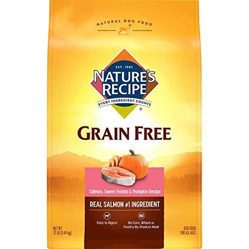 Nature's Recipe Grain Free Dry Dog Food, Salmon,...