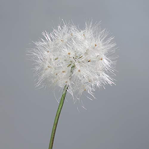 mucplants Pusteblume 80cm Kunstblumen künstliche Blumen Löwenzahn Pusteblumengras