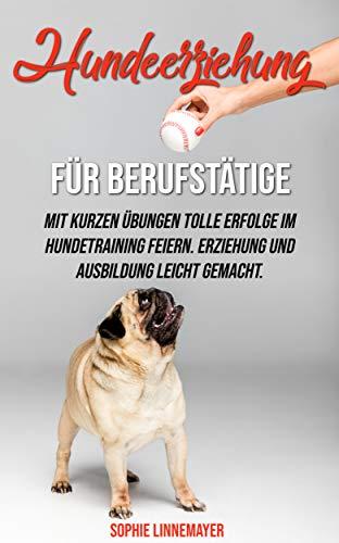 Hundeerziehung für Berufstätige: Mit kurzen Übungen tolle Erfolge im Hundetraining feiern. Erziehung und Ausbildung leicht gemacht