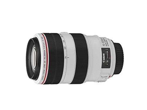 Canon望遠ズームレンズEF70-300mmF4-5.6LISUSMフルサイズ対応