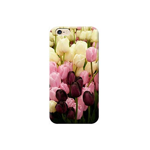 TheBigStock Cover Custodia per Tutti Modelli Apple iPhone x 8 7 6 6s 5 5s Plus 4 4s 5c TPU - AF27 Tulipani Rosa Viola Gialli, iPhone 8 Plus