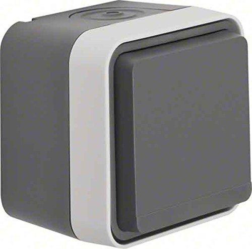 Berker - Toma de corriente (2 unidades), color gris claro