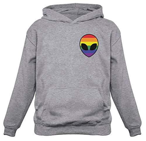 Tstars - Gay Alien Head UFO Rainbow Flag Gay Pride Hoodie Large Gray
