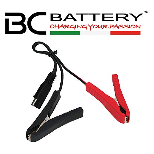 Battery Controller 1138280 Carica Batteria, Black