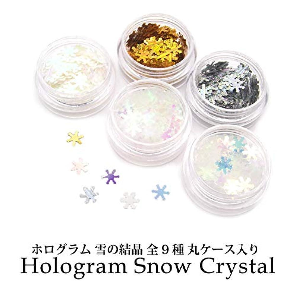 有望軍隊拒否ホログラム 雪の結晶 全9種 丸ケース入り (1.クリアオーロラブルー)