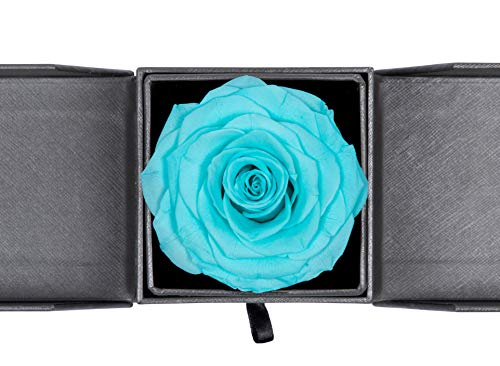 Forever Blossom Handmade Preserved Flower Rose Jewelry Gift Box, Never Withered Roses, Upscale Immortal Flowers, Eternal Life Flowers for Love Ones, Gifts for Women,Mom,Girlfriend (Tiffany Blue)