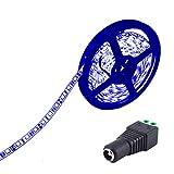 JOYLIT Tiras LED 24V Azul 300 LEDs SMD5050 IP65 Impermeable 5 metros