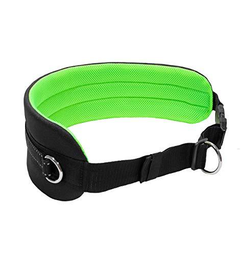 LasaLine Bauchgurt für Hundeleine für Jogging Laufen Dogtrekking Canicross Schwarz Neongrün
