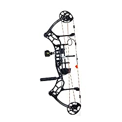 10 Best Compound Bow for Hunting in 2021 4