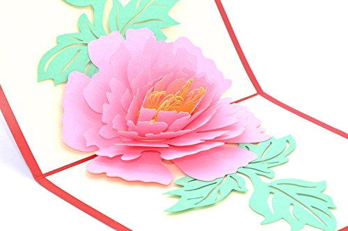 Medigy Carte d'Anniversaire Faite à Main 3D Pop Up Kirigami Creux Fleur de pivoine Pliable Carte Postale de Voeux pour Anniversaire Mariage Saint Valentin avec Enveloppe Rose