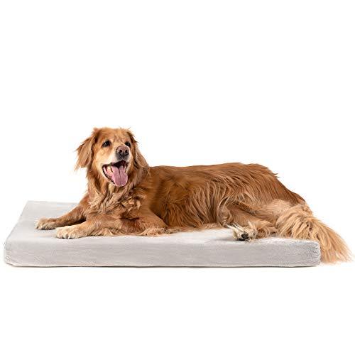 ZENAPOKI Cuccia per Cani - XL Ortopedico, Cuccia per Le articolazioni - Cuscino per Cani Memory Foam, Cuccia per Cani Gel regolatore di Temperatura
