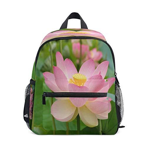 Rucksack Kinder Schulrucksack Lotus Auf Pinterest Kindergarten Bookbag Schultasche für Mädchen Jungen