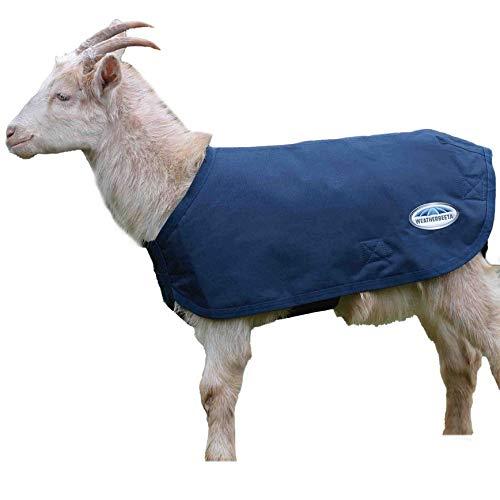 Weatherbeeta デラックスゴートコート。 M