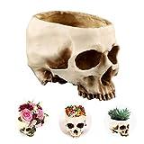 shirylzee Halloween Crâne Tête, Tête de Mort Cendrier Pot De Plante Résine Crâne Humain de Décor Cadeau Ornement pour Fête Halloween Bar Maison Décoration Effrayante