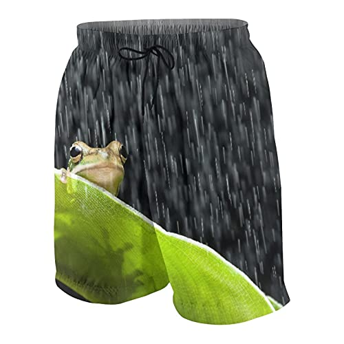 QYUESHANG Herren Beiläufig Boardshorts,Kleiner grüner Laubfrosch, der auf einem Bananenblatt im Regen sitzt,Schnelltrocknend Badehose Strandkleidung Sportbekleidung mit Mesh-Futter