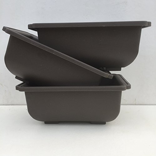 Vaso per Bonsai di Plastica 15 x 10 x 6 cm - Pacco da 3