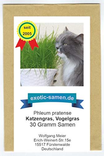Katzengras, Vogelgras -Phleum pratense - 30 Gramm (mindestens 20.000 Samen)
