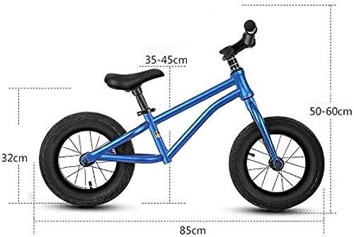 DMMW Patins coulissants 12 Pouces en Alliage d'aluminium pour Enfants, sans pédale, vélo d'équilibre à Deux Roues