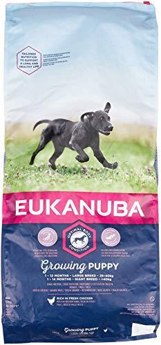 EUKANUBA Cachorro de Raza Grande en Crecimiento rico en pollo fresco [12 kg]