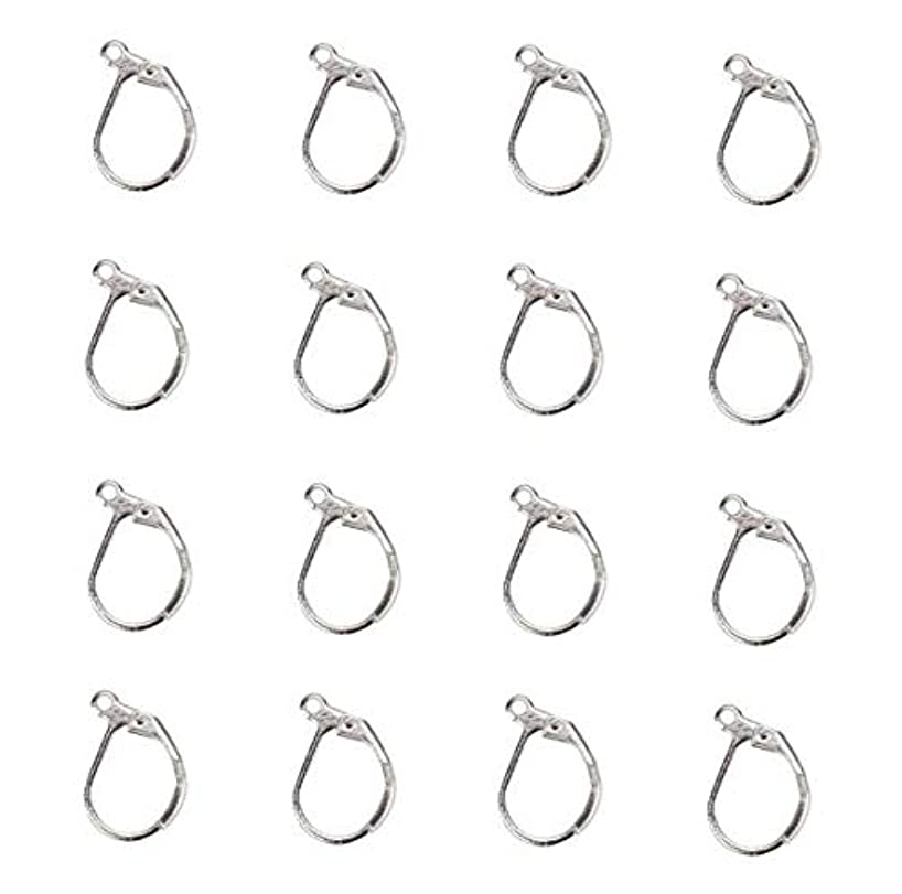 DNHCLL 50PCS Silver 304 Stainless Steel Lever Back Earrings Earwire Findings for Earring Making,DIY Accessories,10x15mm