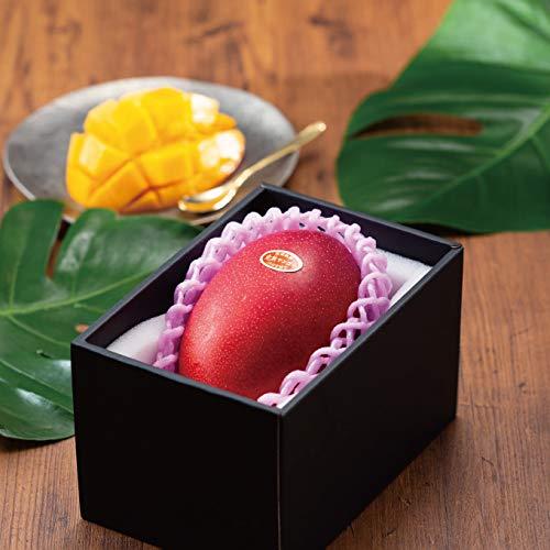 マンゴー みやざき完熟マンゴー 青秀 3Lサイズ 450g以上×1玉 宮崎県産 JA宮崎経済連